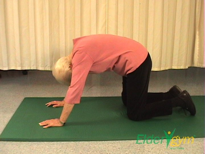 exercises-for-back-pain-2